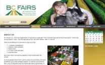 BC Fairs / CMS (Coding)